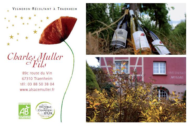 Visite vinicole
